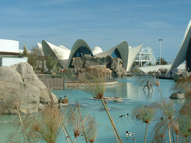 L'Oceanographic - Valencia City of Arts and Sciences - Spain